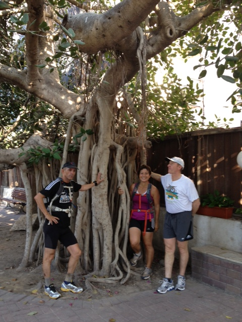 Running Tour of Tel Aviv