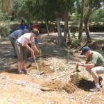Family Tours Milestones Israel