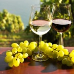 Israel Wine - © Ministry of Tourism