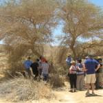 Mini Missions Milestones Israel (4)